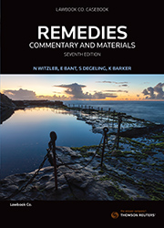 Remedies: Commentary and Materials 6e book + ebook